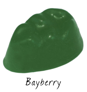 bayberry-283x300